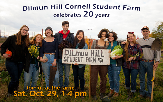 20th Anniversary of Dilmun Hill Student Farm