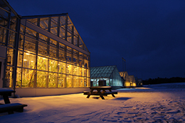 Cornell greenhouses at night