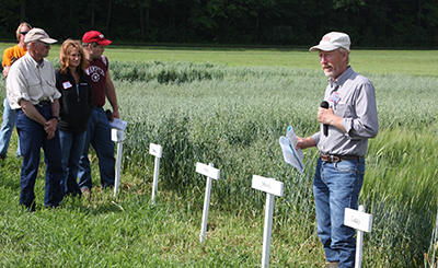 Mark Sorrells explains small grain research trials