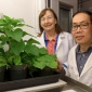 Maureen Hanson and Myat Lin in front of a plant growth chamber