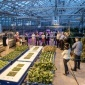 A tour of a Cornell greenhouse